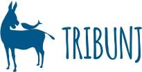 TZT logo web